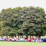 carsandtrees
