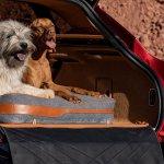 Aston Martin DBX Pet Pack (2)