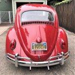 Vw beetle 63 pick andy rear
