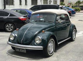A Brazilian Bug